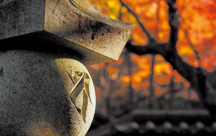 レンズが捉えた彩りの写真展「鎌倉の彩り…そして古都へ」鎌倉芸術館にて