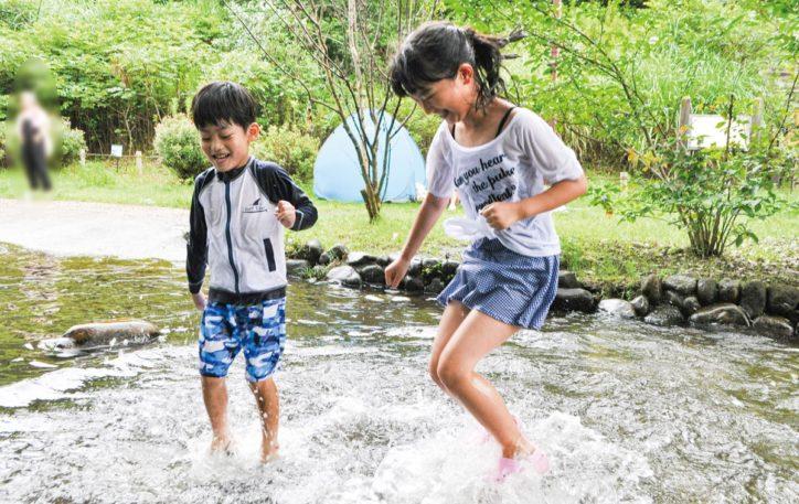 虫取りや水遊びを楽しむー相模川自然の村公園【相模原市緑区大島】