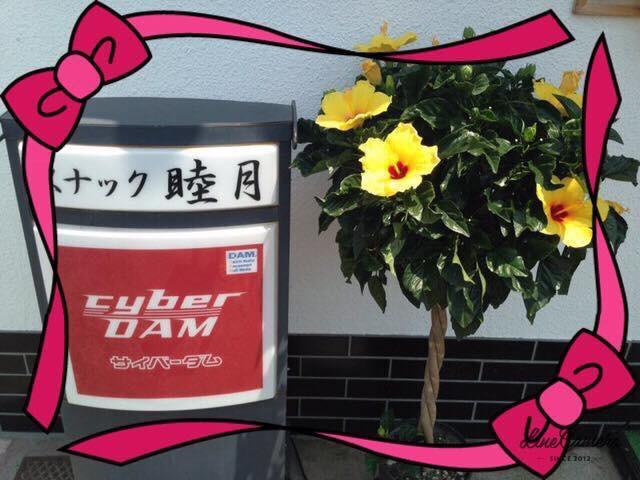 「スナック睦月」:秦野で1,000円キャッシュバックキャンペーン