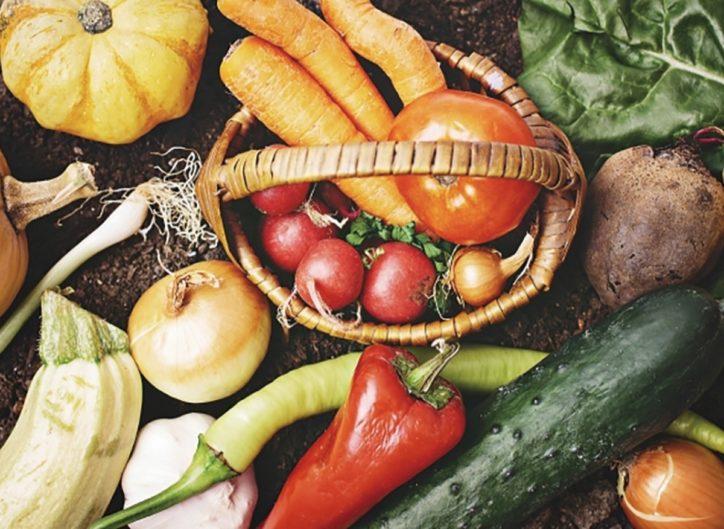 ロス野菜で無料弁当配布  コアラ食堂が協力農家募る【大和市】