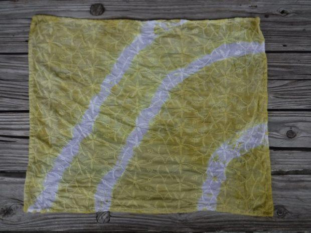 【参加者募集中】箱根やすらぎの森・森のふれあい館で『森林セラピー&コブナグサの草木染体験』