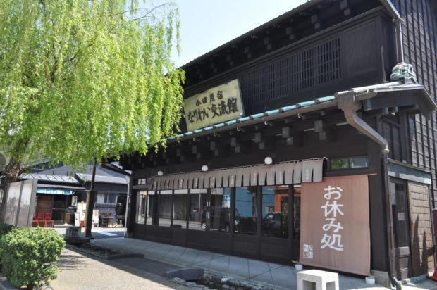 小田原かまぼこ通りで秋酒あじわい巡り!神奈川13蔵の純米酒と小田原名物を楽しむ