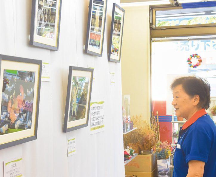 10月は「かぐや姫」を題材に押し花展示【相模原市中央区:よろずや】