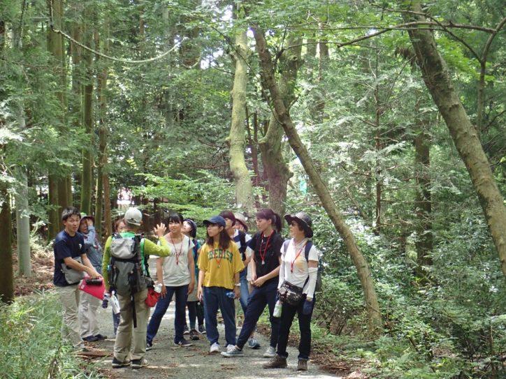 """<全5コース紹介>表丹沢を散策しながら森林浴できる""""セラピーロード""""誕生!見所やアクセスは?"""