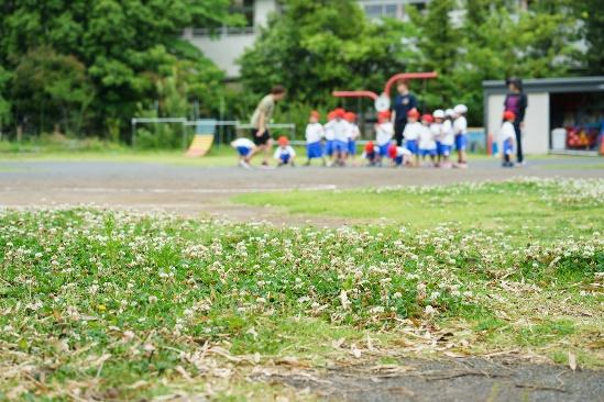 秋葉幼稚園/「あかるい・なかよし・たのしい」が合言葉【横浜市戸塚区】