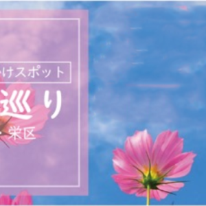 横浜市港南区・栄区周辺の近場へお出かけ『秋空巡り』