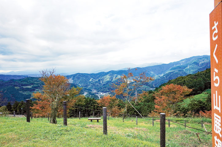 記者レポ~天空を見に行ってみた!@県立山北つぶらの公園