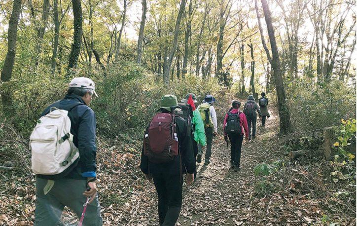 参加者募集「山岳ガイドと行く秋の紅葉低山登山」初心者向けコースで森林セラピー