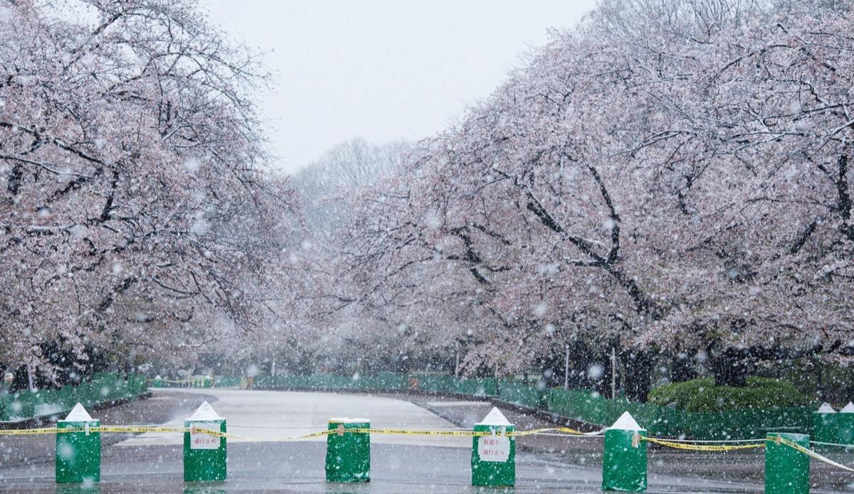 写真展「東京、コロナ禍」激変した東京を初沢亜利さんが撮る【横浜市中区】