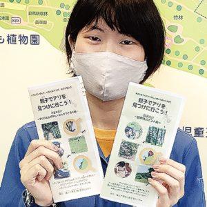 「親子で蟻を探そう」 観察用ガイドを発行【横浜市環境創造局環境活動支援センター】