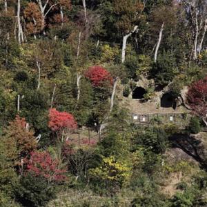 【栄の森へ行こう】鍛冶ヶ谷市民の森 (かじがやしみんのもり) 面積:約3ha