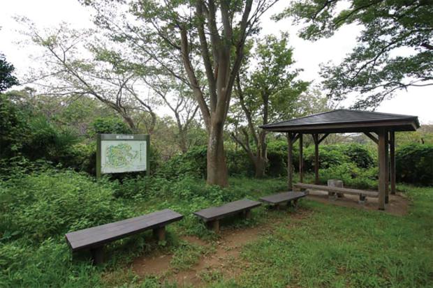【栄の森へ行こう】飯島市民の森(いいじましみんのもり) 面積:約6ha