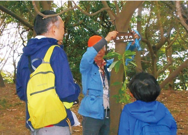 横浜市金沢区の海の公園で「樹名板作り」 参加者を募集中!