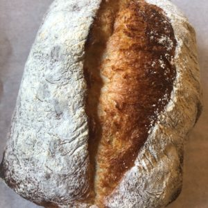秦野産小麦の塩麹ブレッド:パンのくま小屋【はだのブランド認証品】