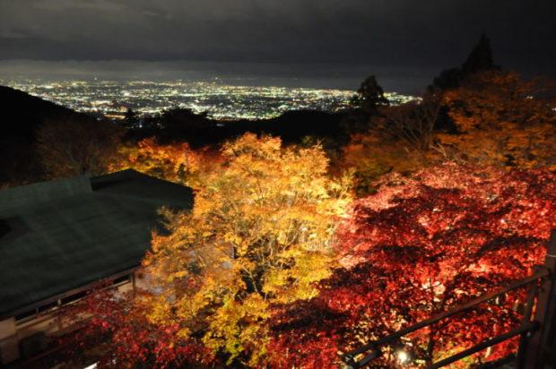 2020年【大山の紅葉ライトアップ】11月29日まで ケーブル夜間運行・臨時駐車場も【伊勢原市】
