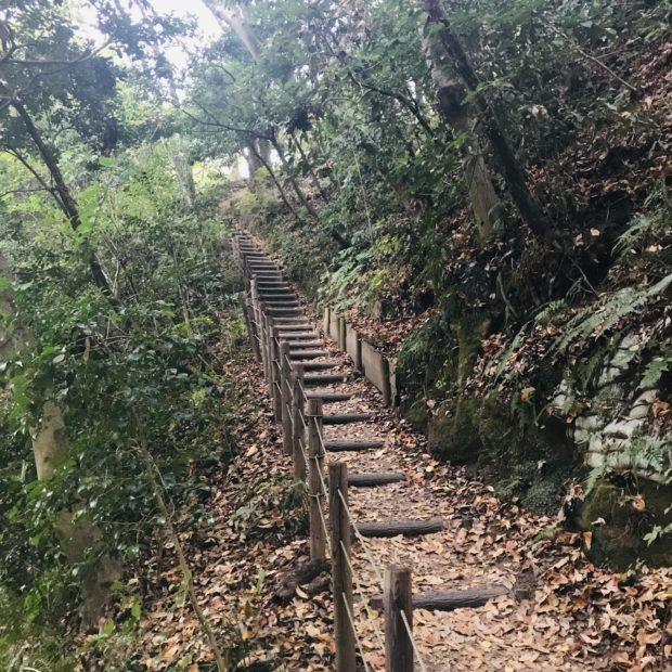 古民家と紅葉の色づきに感じる日本の原風景@新林公園