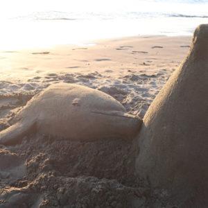 本物そっくりの完成度 イルカのサンドアート@片瀬西浜海岸