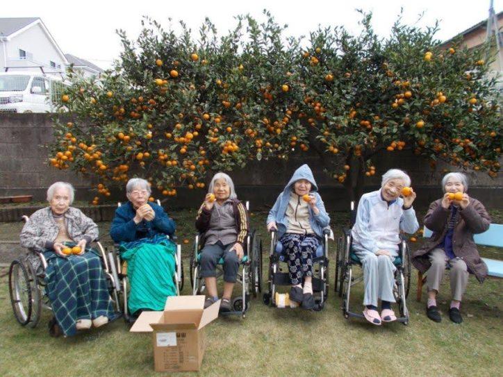 特別養護老人ホーム 白寿荘/利用される方やご家族を大切に想い穏やかな生活を提供します【横浜市泉区】