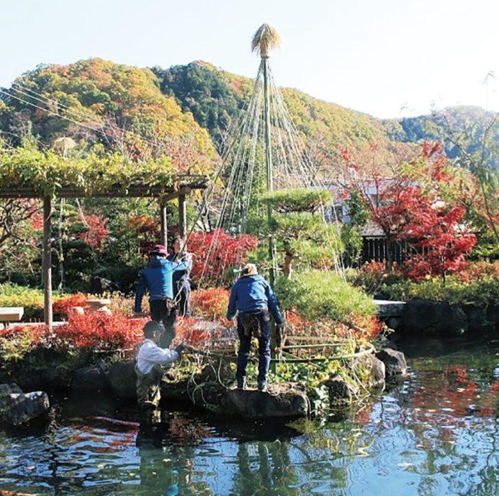 職人たちの匠の技を間近で見られる「松の雪吊り」@高尾駒木野庭園