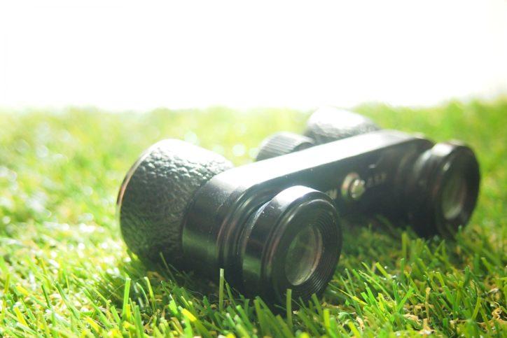 【参加者募集】県立秦野戸川公園で冬の野鳥をじっくり観察してみよう