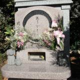 【住職に聞く】ペットへの感謝を込めた「動物供養」ができる 横浜・川崎からほど近い寿徳寺