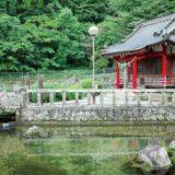 <街かど散策レポ>神奈川の南足柄・山北・開成でぶらり散策!穴場スポット見~つけたッ