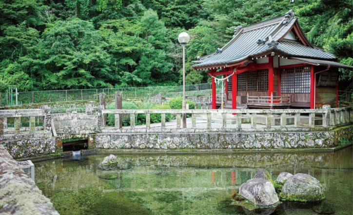 <記者レポまとめ>神奈川の南足柄・山北・開成でぶらり散策!穴場スポット見~つけたッ