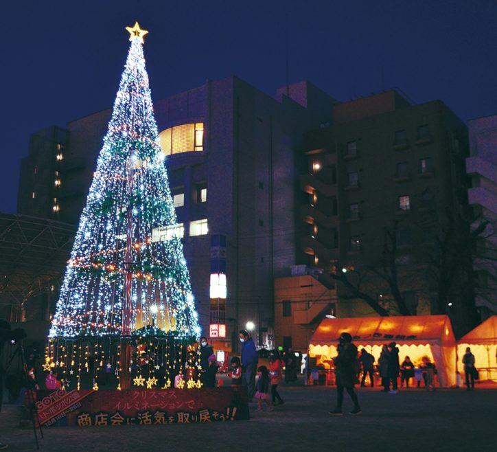 「GoTo厚木公園!」8mツリー12月26日まで点灯 野菜詰め合わせ・ティッシュケースの無料配布も