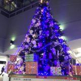 湘南台駅の地下広場に巨大クリスマスツリー!藤沢工科高校のロボット演奏も