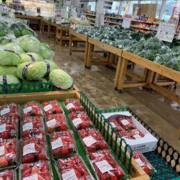 【セレサモスって?】JAセレサ川崎直営の大型農産物直売所に行ってみた