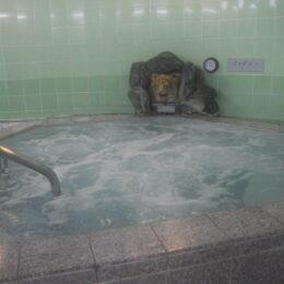 知っているけど行ったことがない?完全初心者でも分かる「銭湯」の魅力と入浴法