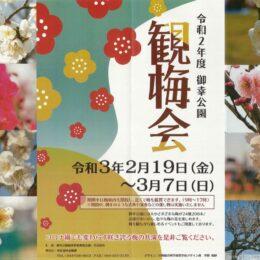 「川崎・御幸公園」で24種208本の梅に春の息吹!2021年はクイズラリーでプレゼントも