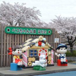 """ペコちゃん公園はだの/""""桜とペコちゃん""""の可愛いお花見写真が撮れる"""