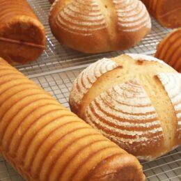 手作り工房 pan tukuro/作りたい!食べたい!を叶える アットホームなパン工房 【愛川にぎわいマルシェ参加店舗】