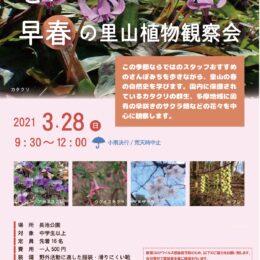 2月15日から受け付け開始「とっておき早春の里山植物観察会」@八王子市・長池公園