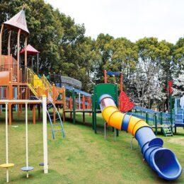 わんぱく広場の遊具がリニューアル!キッズ向け遊具も増えたよ@平塚市総合公園