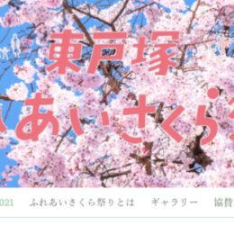 「東戸塚ふれあいさくら祭り」2021年はオンライン開催 出演者から舞台裏まで動画で紹介 品濃中央公園の桜風景も