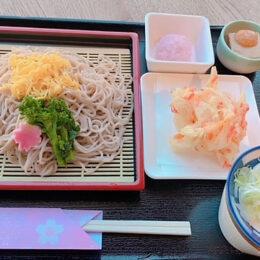 秦野名水育ちのそばを使った「桜そばセット」/名水はだの富士見の湯(秦野市)
