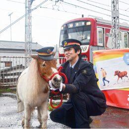 【事前予約制】観音崎京急ホテルで馬とふれあう新アクティビティ開始・土日限定開催