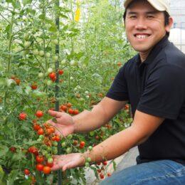 茅ヶ崎で生まれ育った、ミニトマト農家の大きな挑戦<わたしの茅ヶ崎暮らし>