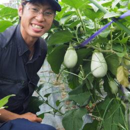脱サラし地元・茅ヶ崎で農業者に「これが自分らしい働き方」<わたしの茅ヶ崎暮らし>