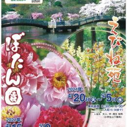 新緑の回廊を散策しながら春の訪れを楽しむ「ぼたん園・えびね苑」2021年も開園@町田薬師池公園