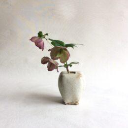 茅ヶ崎在住の陶芸家・宮崎和佳子さんの作品展 辻堂のおもて珈琲で5月5日まで開催中