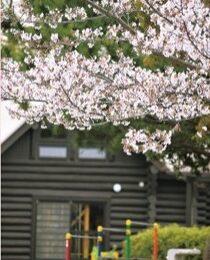 横浜市・泉区で見つけた2021年「春の風景」
