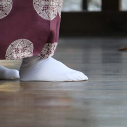 <読プレ付き>新日本舞踊「伴翠流」記念チャリティー公演 (海老名市文化会館)