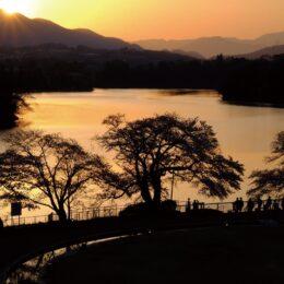 「令和2年度第9回津久井湖記念館フォトコンテスト」入選作品を津久井湖記念館で展示