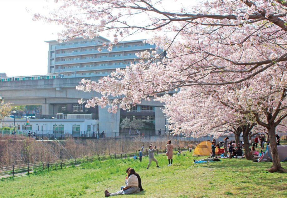 早渕川親水広場