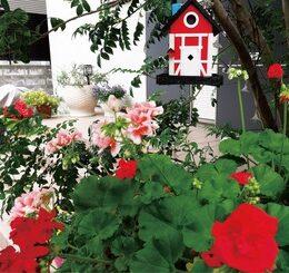 【横浜市】「港北オープンガーデン」 丹精込めた花々の祭典 4月12日から 114会場で