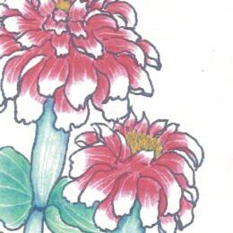 『シニア塗り絵作品展』 秦野市南矢名喫茶&ギャラリー「みかんの木」で開催中 6月4日まで