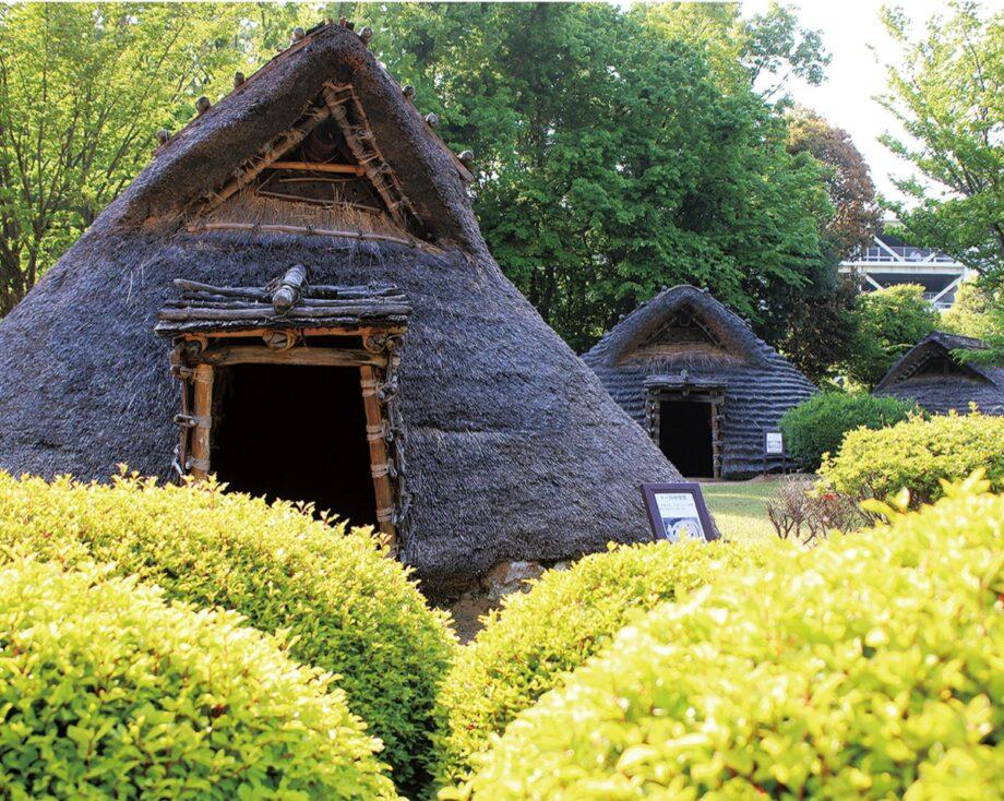竪穴住居には実際に入ることもできる